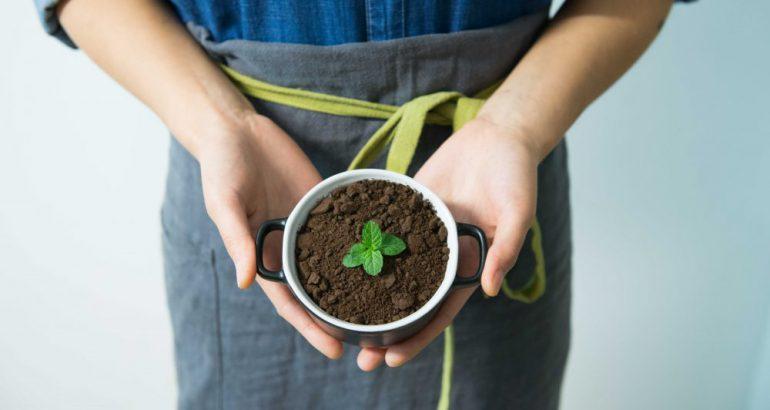 5 hábitos para apoyar a la conservación del planeta.