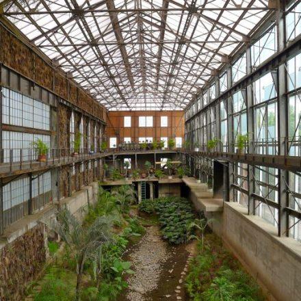 Jardín de la Biblioteca Vasconcelos: Un secreto en la CDMX
