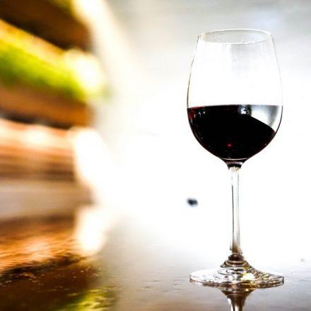 El vino sonorense es una realidad y llegó para quedarse