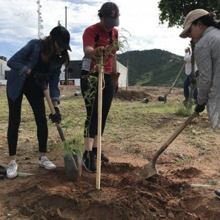 Ciudadanos y activistas realizan jornada de reforestación en Hermosillo