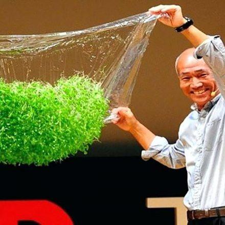 Japón revoluciona la industria agrícola con este novedoso método de cultivo