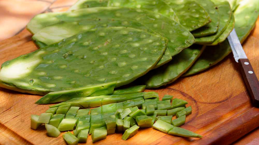 nopal 5 superalimentos mexicanos que debes incluir en tu dieta