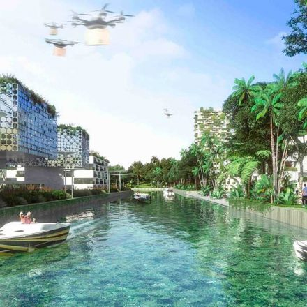 'Smart Forest City', el primer bosque inteligente de México