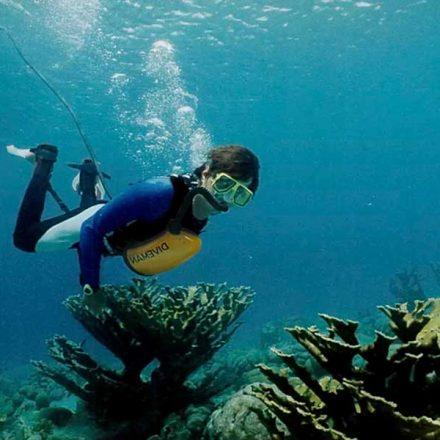 Este nuevo pulmón artificial te permitirá respirar bajo el agua todo el tiempo que desees