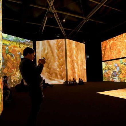 Consejos para capturar las mejores fotografías en 'Van Gogh Alive'