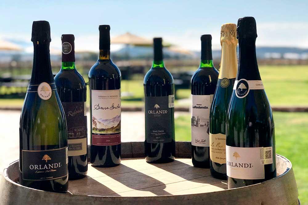 Festival de 100 Vinos Mexicanos 2020, una celebración de cultura vinícola en Querétaro