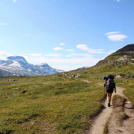 Neurocientíficos señalan que el senderismo puede rejuvenecer la mente
