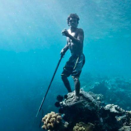 Los Bajau, la tribu que se sumerge a 60 metros bajo el agua gracias a una mutación en su ADN