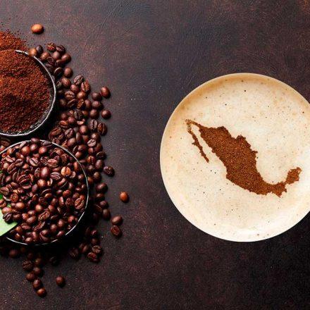 ¡Consume café mexicano! Conoce cuatro marcas que destacan por sus prácticas sustentables