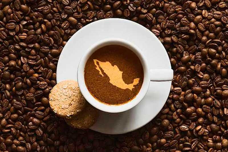 Café de México: conoce los principales estados productores