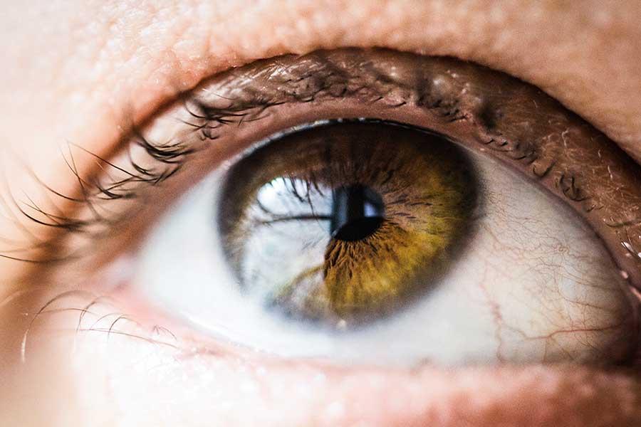 4 sencillos métodos para 'ejercitar' la vista