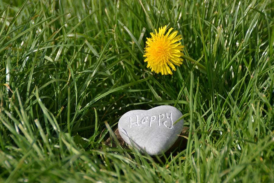 5 preguntas que te ayudarán a encontrar la felicidad