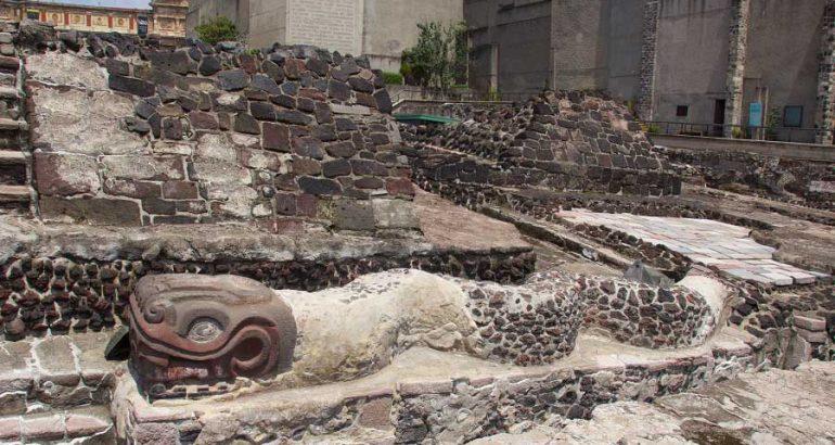 Restos de pepinos de mar en Templo Mayor reafirman existencia de buzos mexicas