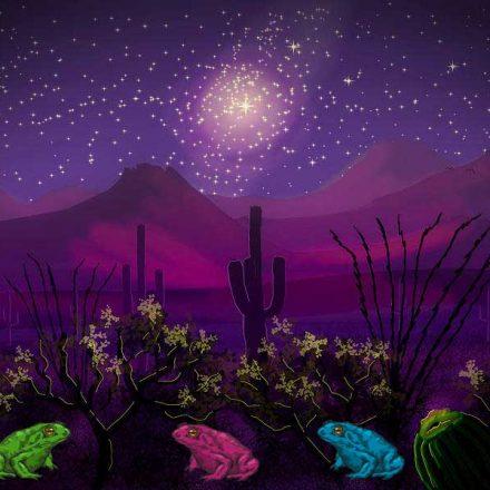 Ritual de sanación comcáac con sapos alucinógenos: Un secreto del desierto de Sonora