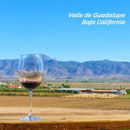 "¡A votar por Valle de Guadalupe! Está nominado para ""2020 Best Wine Region by Best Readers Choice"""