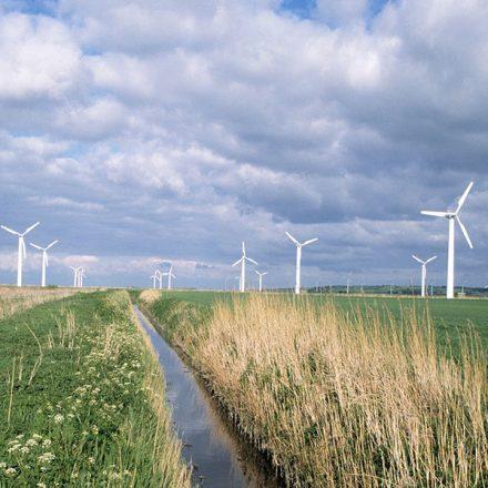 Dinamarca obtiene casi la mitad de su electricidad a partir de fuentes renovables. ¿Cómo lo lograron?