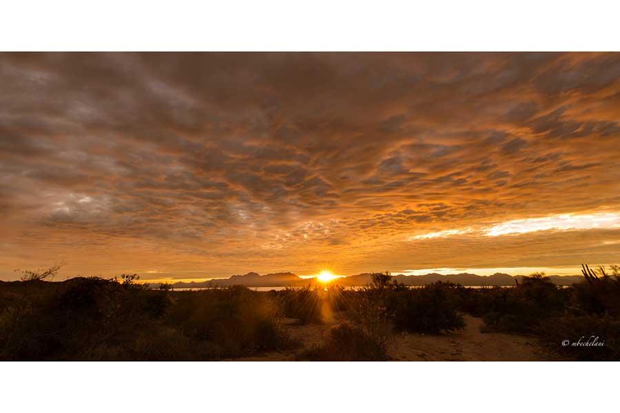 Proyectos de Gran Visión para Sonora 2021-2050