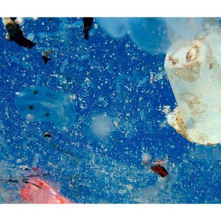 Sin acciones concretas, la contaminación de los océanos podría triplicarse en el 2040, afirma estudio