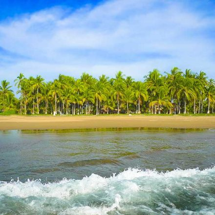 Playa Las Tortugas, un tesoro escondido en la Riviera Nayarita