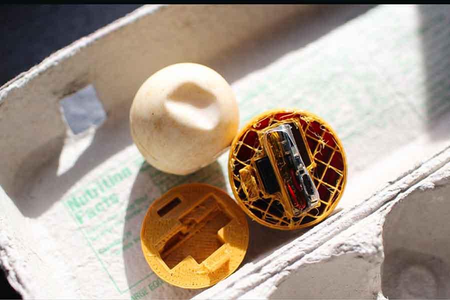 Crean huevos de tortuga falsos con GPS para rastrear tráfico ilegal en Costa Rica