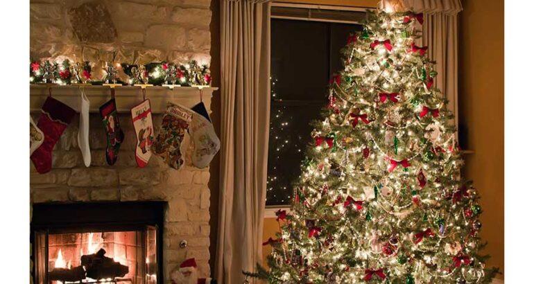 ¿Cuándo debes colocar tu árbol de Navidad?