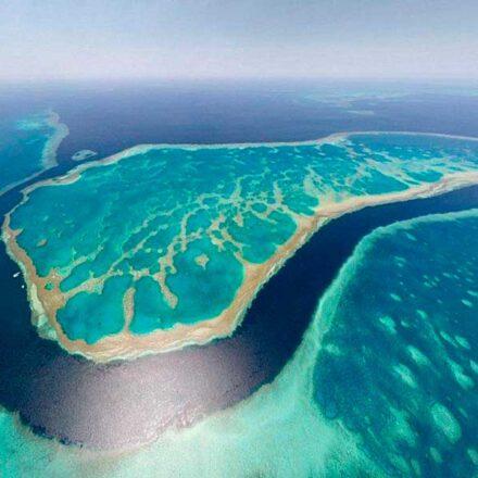 Descubren arrecife de coral más alto que el Empire State en Australia
