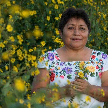 """Mujer maya gana el """"Nobel"""" del medio ambiente por su lucha a favor de las abejas"""