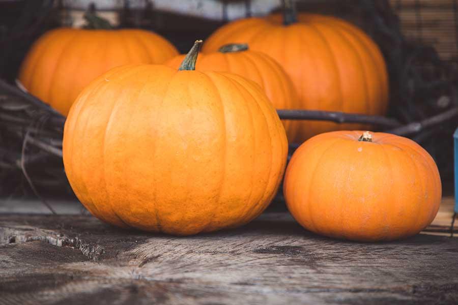 Dulce de calabaza, clásico del otoño sonorense