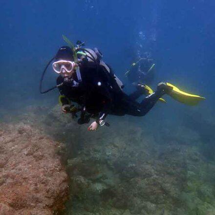 El buceo en costas de Sonora, una experiencia completa