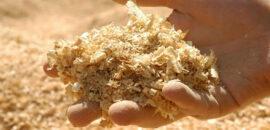 Crean bioplástico con aserrín de madera que puede degradarse en tres meses