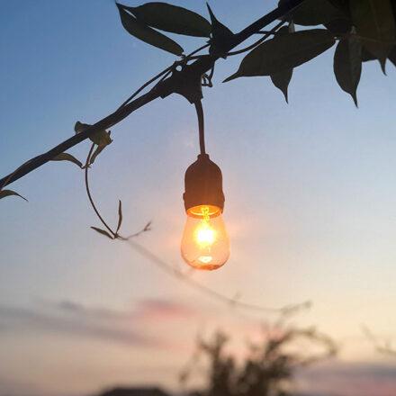 ¿Cómo encontrar tu siguiente gran idea? Presta atención a estos cambios