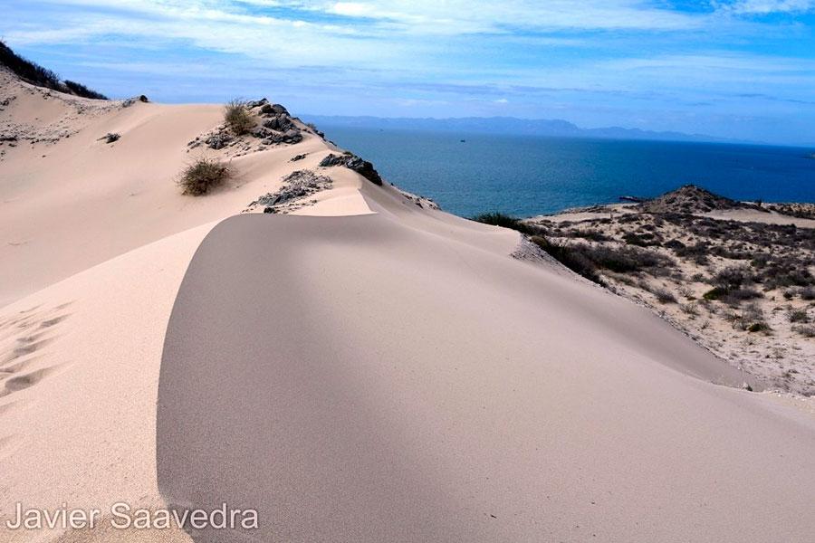 Dunas de San Nicolás, paraíso del deporte extremo en Sonora