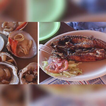 Oferta gastronómica natural, fresca y accesible en Bahía de Kino