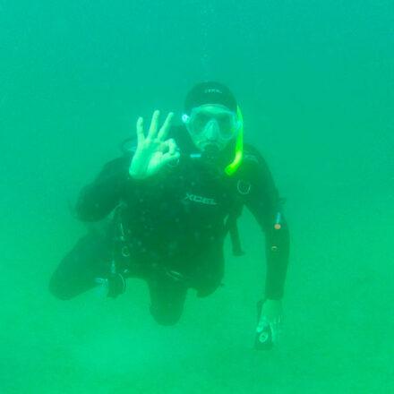 Arrecifes artificiales a base de conchas de caracol chino, proyecto que traería ventajas a Bahía de Kino