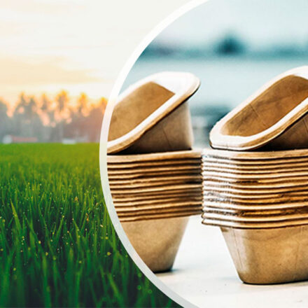 Científicos de Dinamarca desarrollan envases de pasto 100% biodegradables