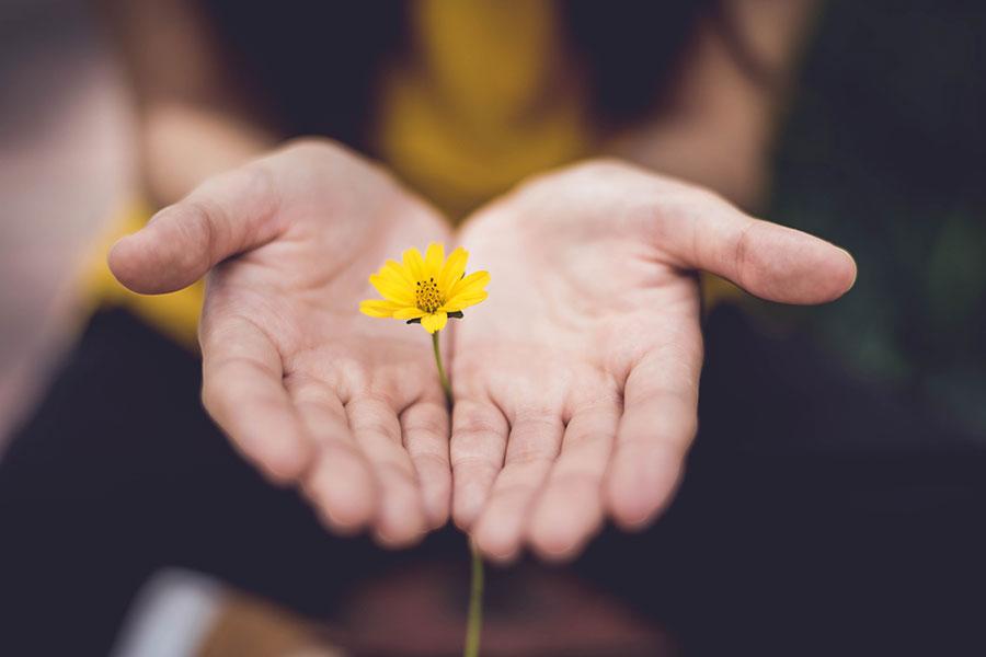 4 maneras de construir relaciones más sanas y armónicas