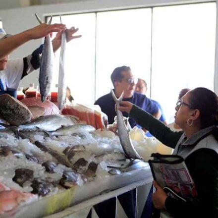 La necesidad de un mercado de pescados y mariscos en Bahía de Kino