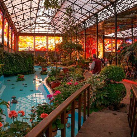 6 increíbles jardines mexicanos que todo amante de la naturaleza debe visitar
