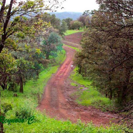 3 rincones de naturaleza insólita en Yécora, Sonora